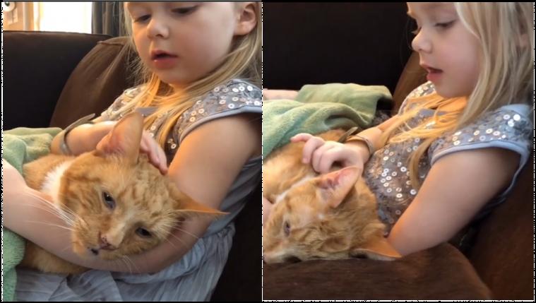 Sedih! Anak Kecil Ini Menyanyikan Lagu Terakhir untuk Kucingnya yang Sudah Tua dan Sekarat | Keepo.me