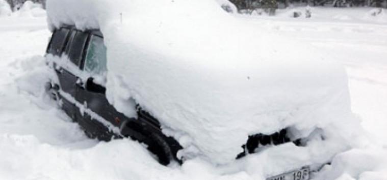 Karena Saus Taco, Pria dan Anjingnya Ini Selamat Walaupun Terjebak Salju Selama 5 Hari | Keepo.me