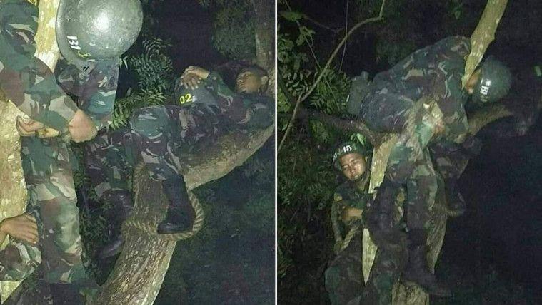 "'Tidur Kalong', Demi Tugas Para Prajurit TNI Tidur di Atas Pohon. Netizen: ""Totalitas!"" | Keepo.me"