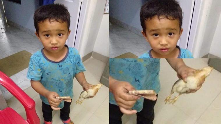 anak kecil bawa ayam mati ke RS