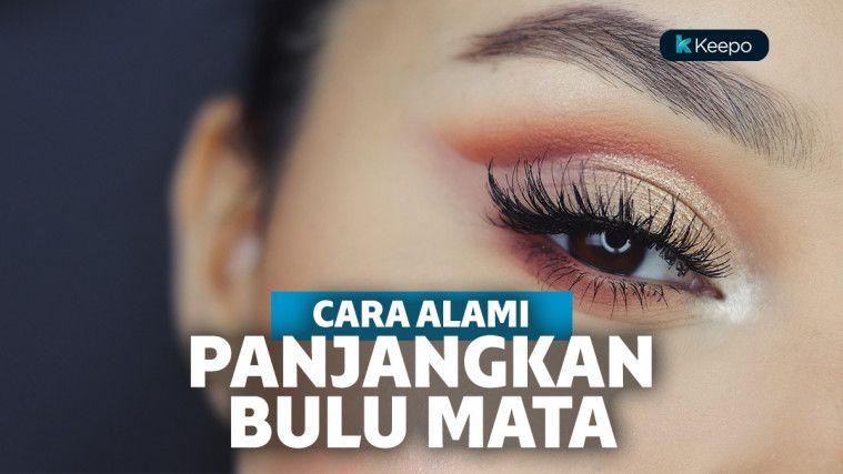 12 Cara Memanjangkan Bulu Mata yang Bikin Kamu Makin Cantik | Keepo.me