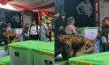 Kotak-kotak yang diduga barang bukti dari Prabowo Sandi