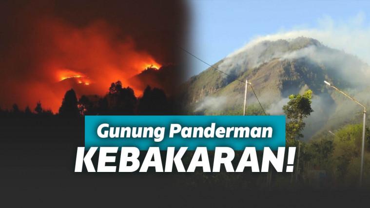 Kebakaran Hebat di Gunung Panderman, Pendaki Terpaksa Dievakuasi! | Keepo.me