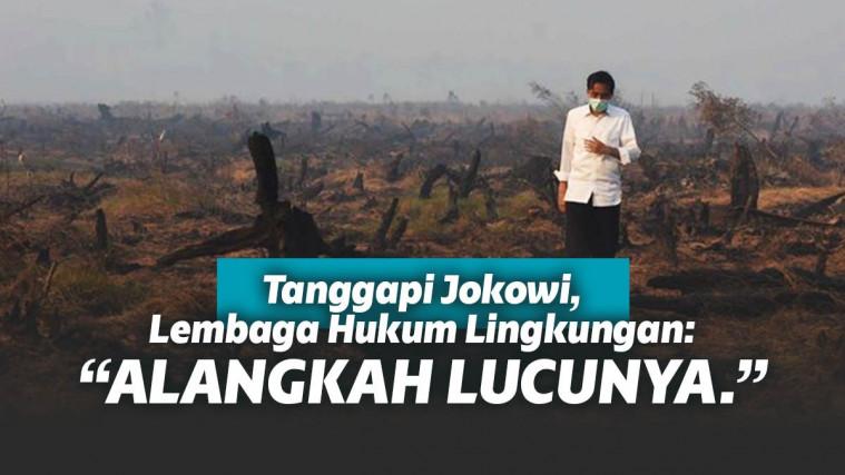 Jokowi Ajukan Peninjauan Kembali Kebakaran Hutan, Lembaga Hukum Lingkungan: Alangkah Lucunya | Keepo.me