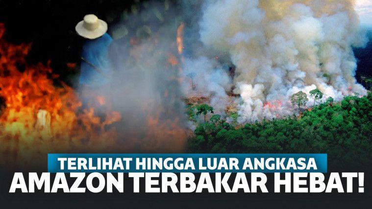 Hutan Amazon Kebakaran Hebat, Terburuk Sepanjang Sejarah Brasil!