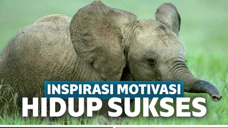 Mau Hidup Sukses? Simak 3 Cerita Inspirasi Motivasi Ini | Keepo.me
