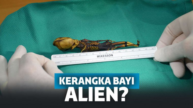 Terungkap! Misteri Kerangka yang Dikira Bayi Alien Ini Tunjukkan Fakta Menyedihkan | Keepo.me