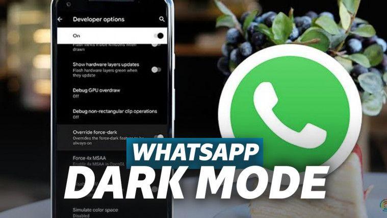 Segera Aktifkan WhatsApp Dark Mode untuk Tampilan Chat yang Tak Monoton | Keepo.me
