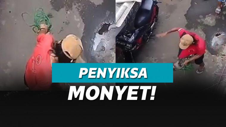 Kejam! Detik-Detik Monyet Dianiaya Pawangnya, Bikin Satpol PP Geram! | Keepo.me
