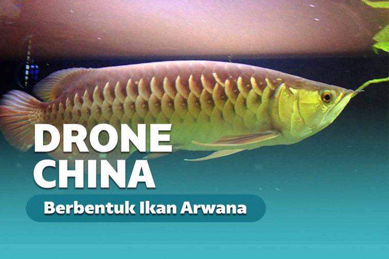 Cina Buat Drone Bawah Air Super Realistik Mirip Ikan Arwana