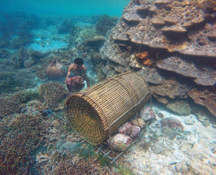 Wisata Di Pulau Alor Terfavorit Yang Bikin Enggan Pulang